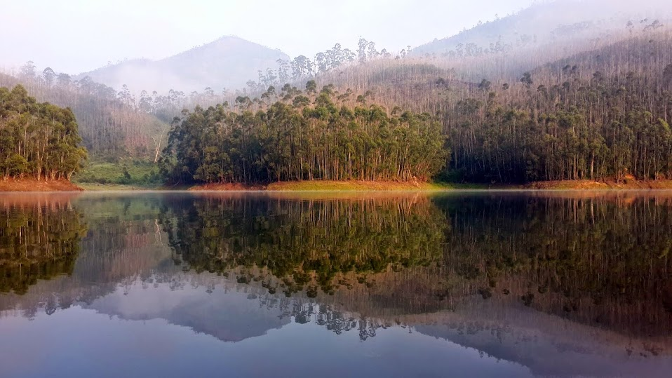 Munnar Running - Dam Pic