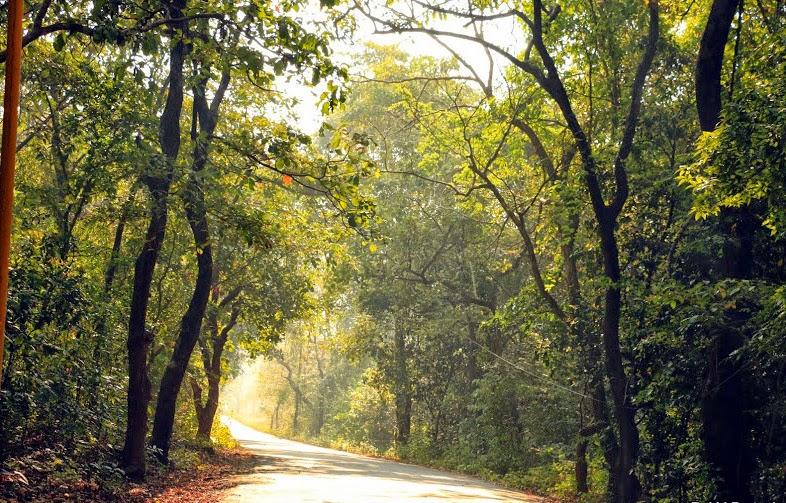 Dandeli_ghat_roads