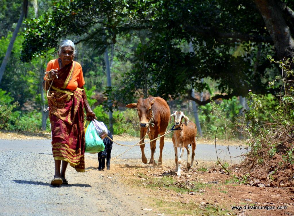 Kolli hills village scene - val vill ori ultra