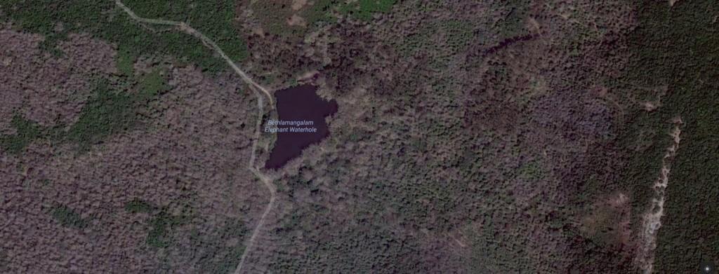 Bethlamangalam Elephant waterhole