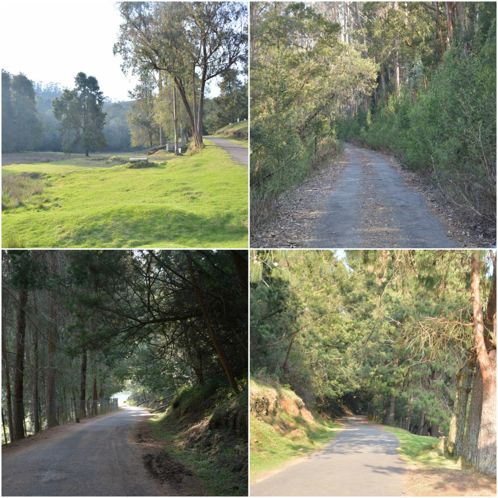 Berijam lake ghat roads